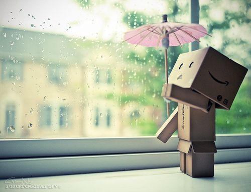 Rainy Boxes